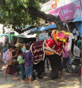 Kyaukse Elephant Dance Festival