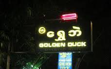 Golden duck.jpeg