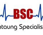 BSC Logo.jpg
