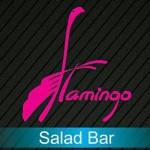 Flamingo Salad Bar Logo.jpg